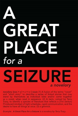 Interview: Terry Tracy talks about her novel 'A Great Place for a Seizure'